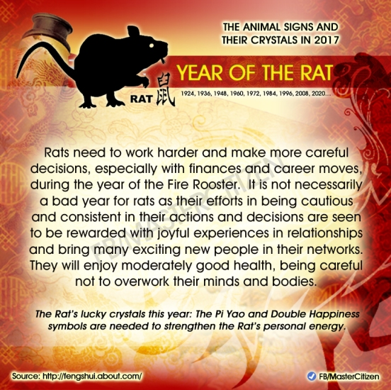 1-year-of-the-rat