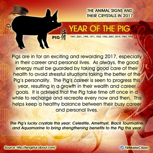 12-year-of-the-pig