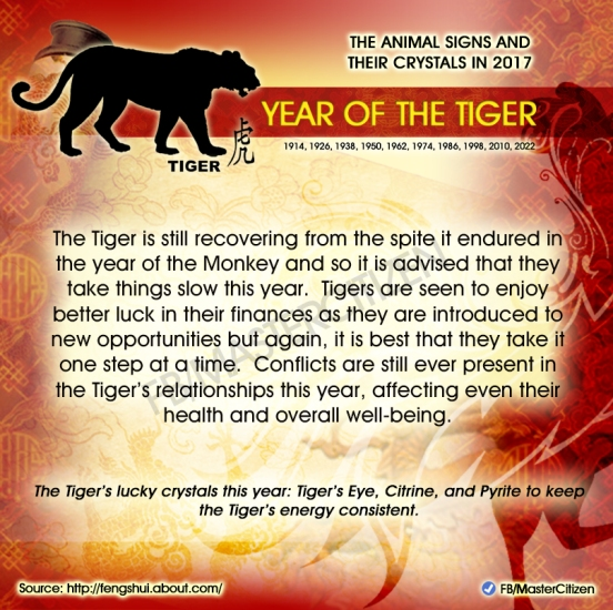 3-year-of-the-tiger