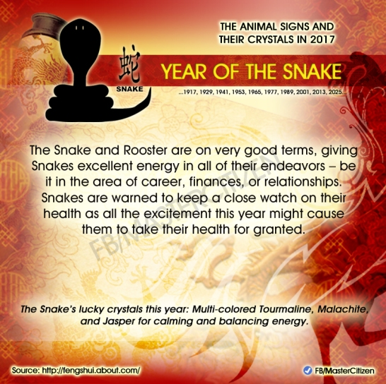 6-year-of-the-snake