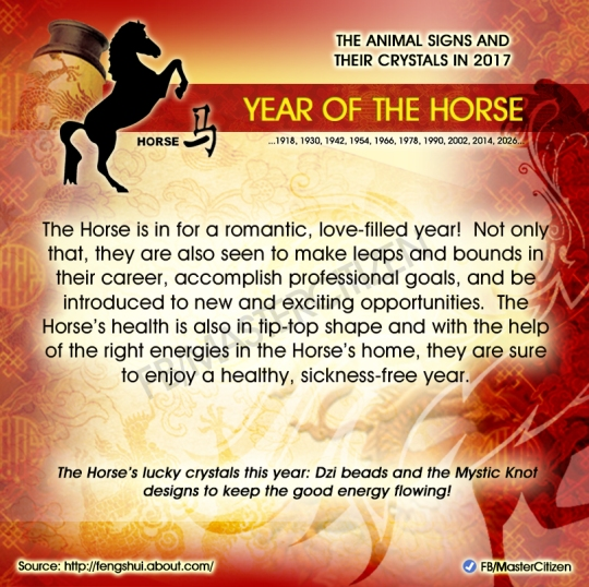7-year-of-the-horse