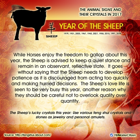 8-year-of-the-sheep