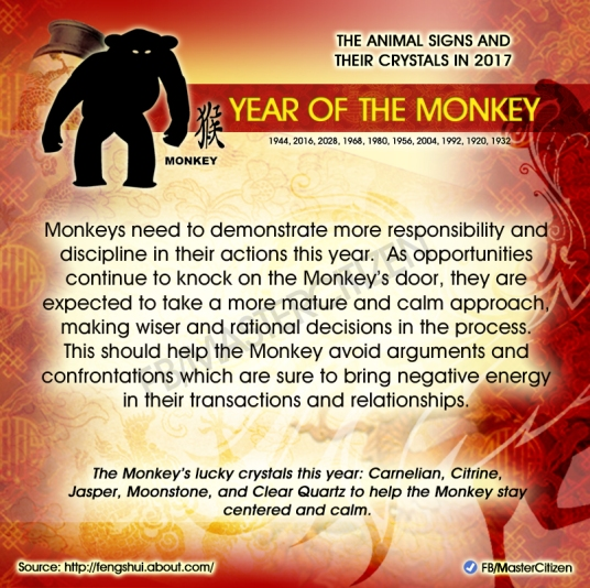 9-year-of-the-monkey