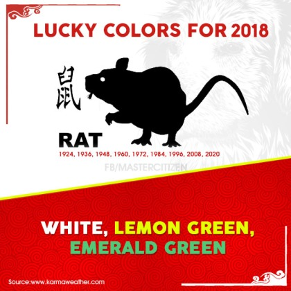 1 - rat