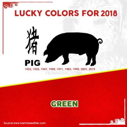 12 - Pig
