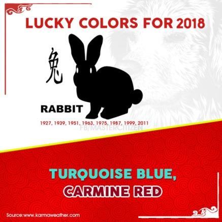 4 - Rabbit