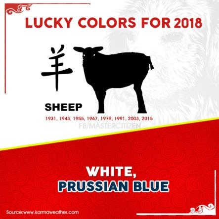 8 - sheep